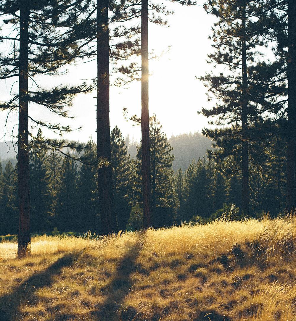Flagstaff Image
